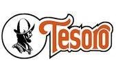 Detectores Tesoro